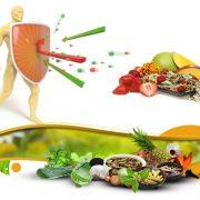 پروبیوتیک ها و تقویت سیستم ایمنی
